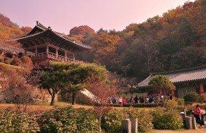 Khuôn viên chùa Buseoksa