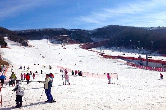 Khu trượt tuyết Yanji Pine nổi tiếng ở Hàn Quốc