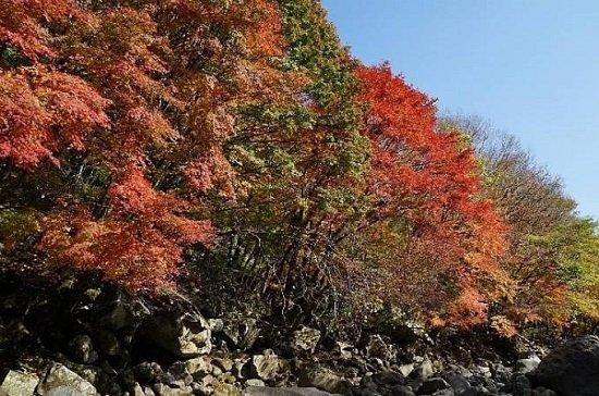 Thung lũng Cheon Ah ở Jeju