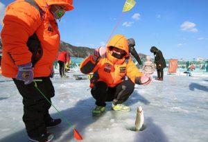 Lễ hội câu cá băng tại Pyeongchang