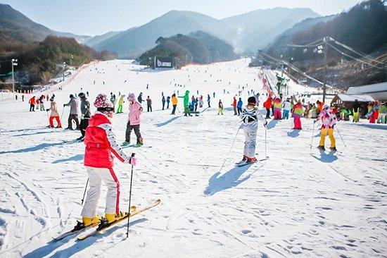 Trượt tuyết khi du lịch Hàn Quốc mùa Xuân