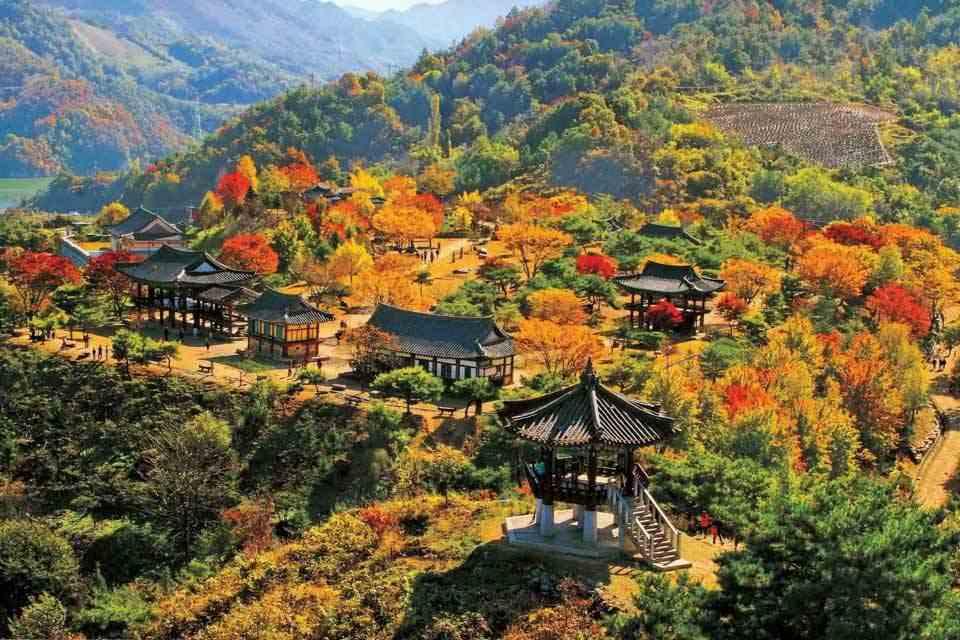 Tour-han-quoc-6-ngay-5-dem-seoul-dao-nami-dao-jeju-11