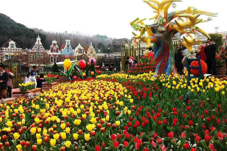 Tour-han-quoc-6-ngay-5-dem-seoul-dao-nami-dao-jeju-15