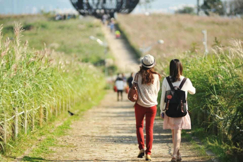tour-han-quoc-4-ngay-4-dem-seoul-cong-vien-bau-troi-everland-floating-island-19
