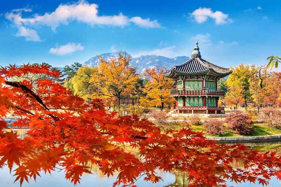 tour-han-quoc-4-ngay-4-dem-seoul-cong-vien-bau-troi-everland-floating-island-9