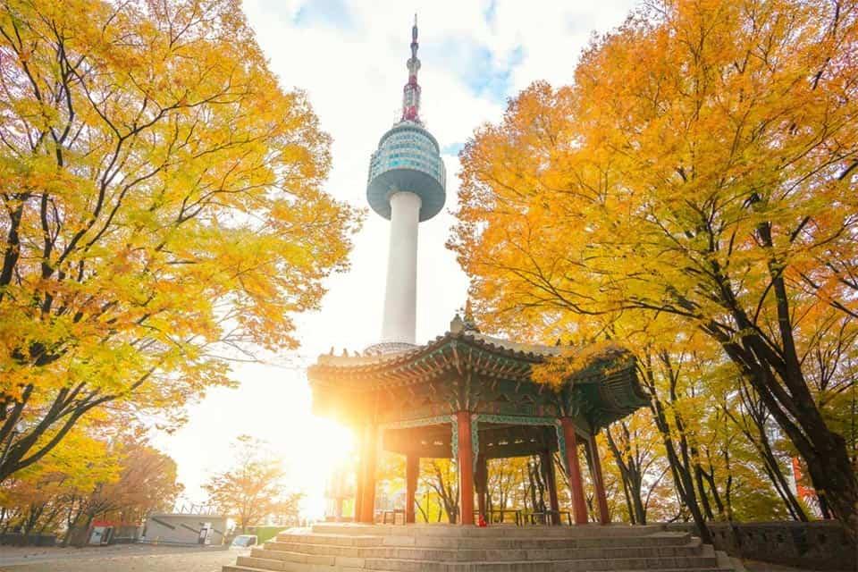tour-han-quoc-4-ngay-4-dem-seoul-nami-everland-17