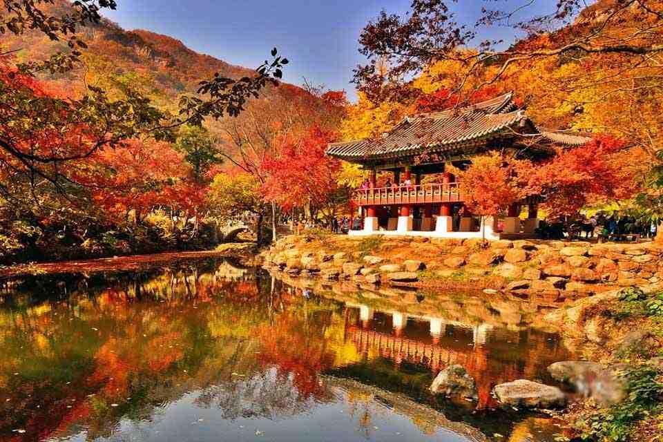 tour-han-quoc-4-ngay-4-dem-seoul-nami-everland-24