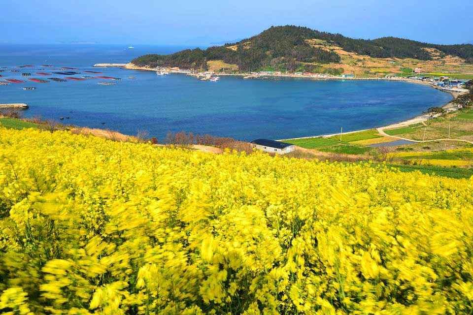 tour-han-quoc-4-ngay-4-dem-seoul-nami-everland-9