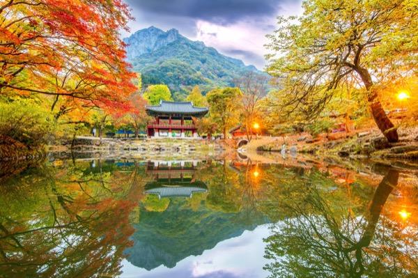 Công viên quốc gia Naejangsan  Hàn Quốc mùa lá đỏ